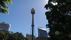 Sydney Tower Sydney Travel Guide