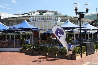 Seafood restaurants in sydney for Blue fish restaurant
