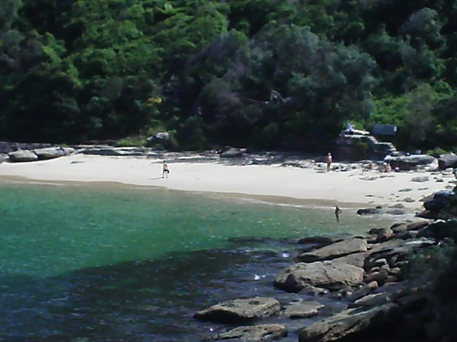 Walking track Obelisk and Cobblers beach | News Local